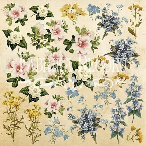 """Купить картинки для вырезания """"Botany summer"""" №1 Фабрика Декору"""