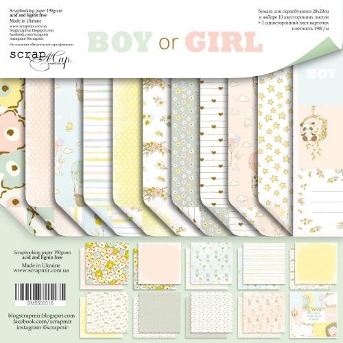 Набор двусторонней бумаги Boy or Girl 20х20см от Scrapmir, фото