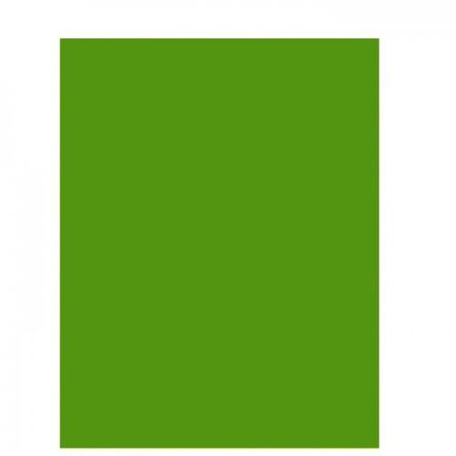 Цветная двусторонняя бумага 29.7х21 см Зеленый