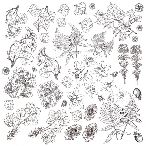 """Лист для для раскрашивания аква-чернилами """"Botany summer"""" (30,5x30,5см) Фабрика Декору"""