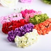 Декоративные цветы (28)