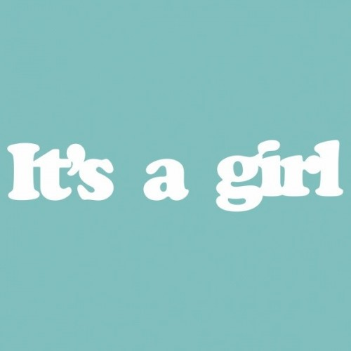 """Чипборд """"IT'S A GIRL"""" 19*87мм. Вензелик"""