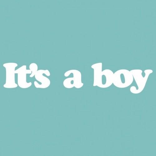 """Чипборд """"IT'S A BOY"""" 18х88 мм. Вензелик"""