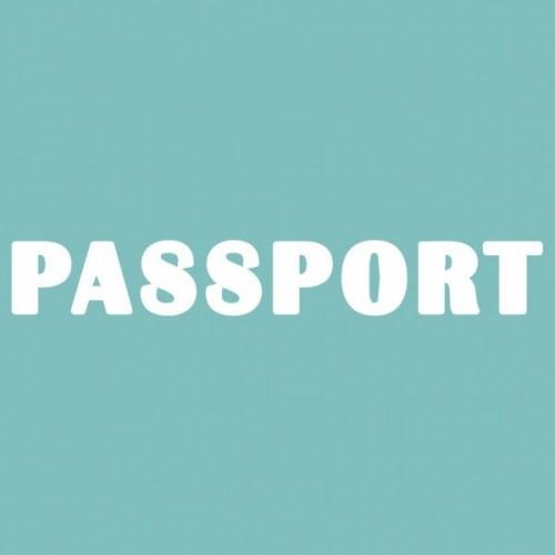 """Чипборд """"Паспорт 04"""" 10х70 мм. Вензелик"""