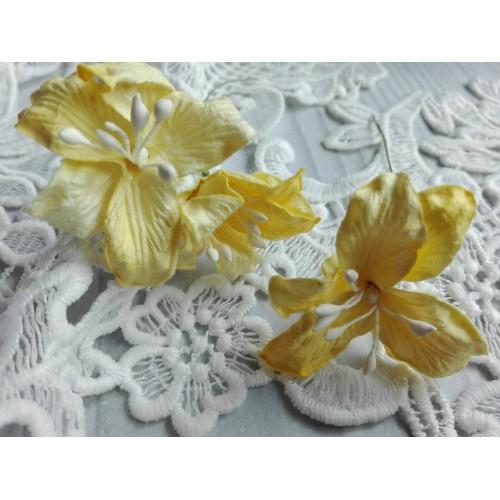 купить бумажные цветы лилии желтые