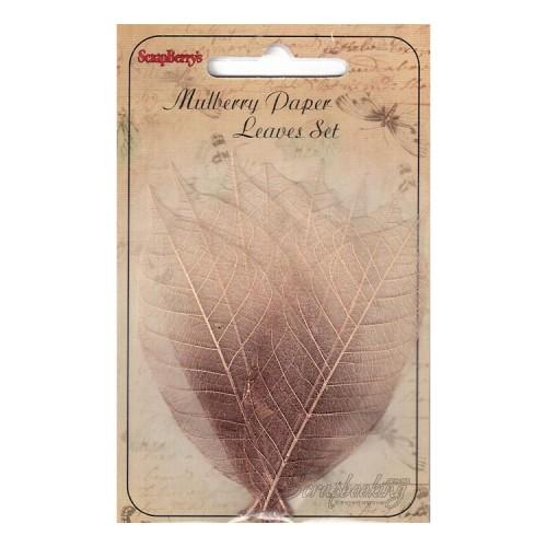 Набор скелетированных листьев из каучукового дерева Scrapberry's - Медно-коричневый, 8 шт, размер 9 см