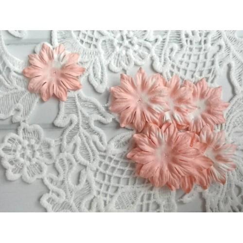 Цветок Маргаритка коралловый 37 мм фото