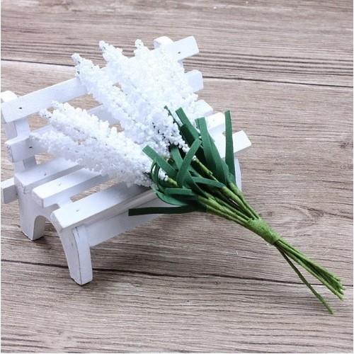 Декоративная лаванда Белая