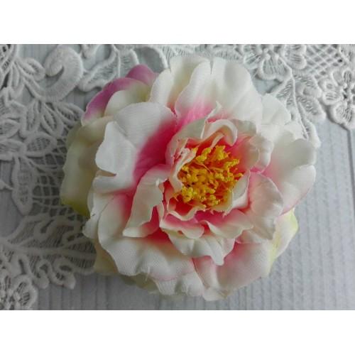 купить декоративные пионы розовые