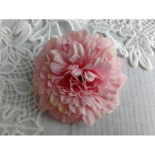 купить декоративные астры розовые