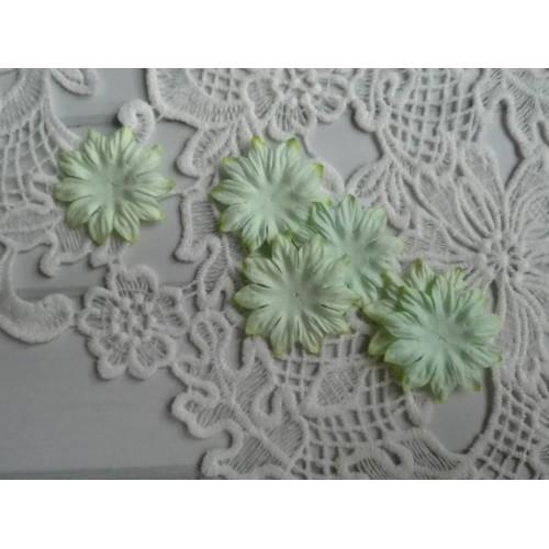 Цветок Маргаритка мятный 37 мм фото