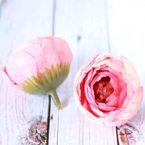купить ранункулюсы головки Кремово-розовые