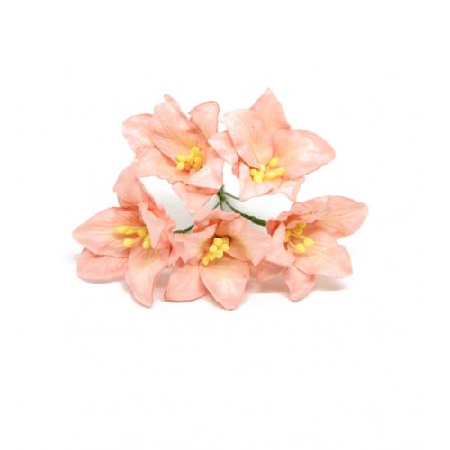 купить бумажные цветы лилии коралловые