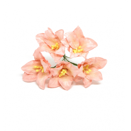 Цветок Лилия коралловая 5 см фото