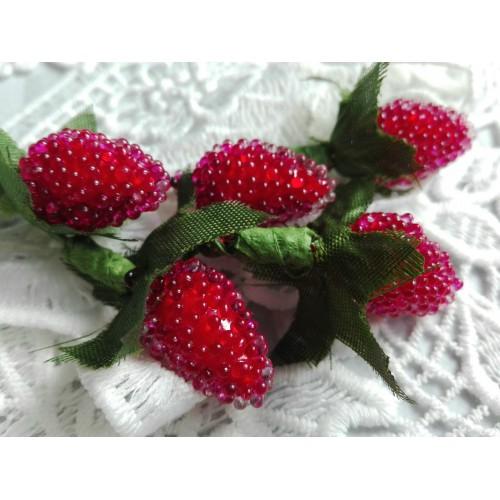декоративные ягоды Ежевика красная фото
