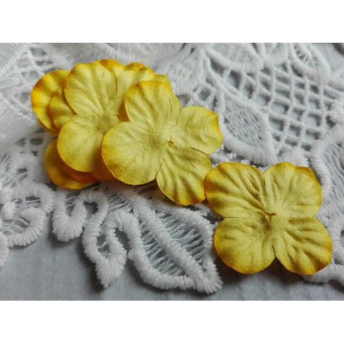 купить цветы Тайланд гортензии желтые