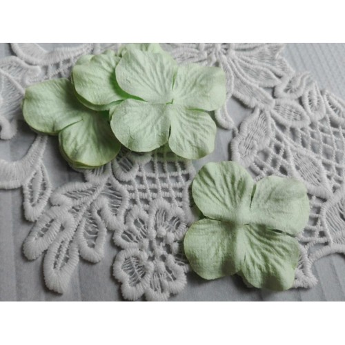 купить цветы Тайланд гортензии светло-зеленые 5 см