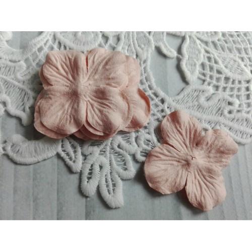 купить цветы Тайланд гортензии розовые 5 см