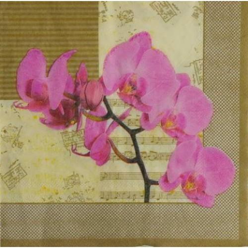 Декупажная салфетка Орхидея 2, 33x33 см