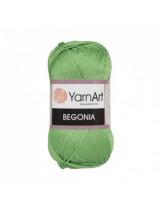 Нитки для вязания YarnArt Begonia Бледно-зеленый  6369