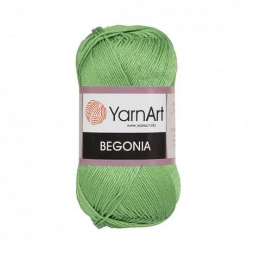 Нитки для вязания YarnArt Begonia Бледно-зеленый  6369, фото
