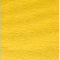 Двусторонний цветной картон Elle Erre А4, №25 cedro, 220г/м2, Fabriano