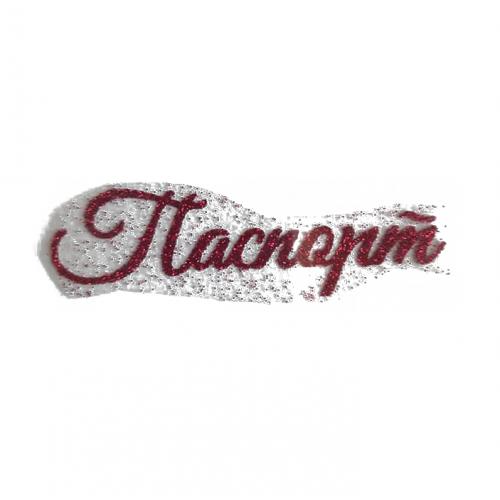 """Надпись из термотрансферной пленки """"Паспорт №1"""", Малиновый"""