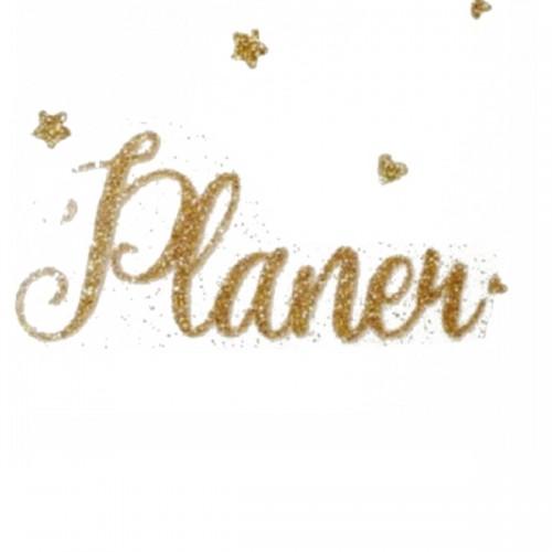 """Надпись из термотрансферной пленки """"Planer"""""""
