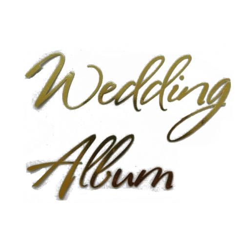 """Надпись из термотрансферной пленки """"Wedding Album"""""""