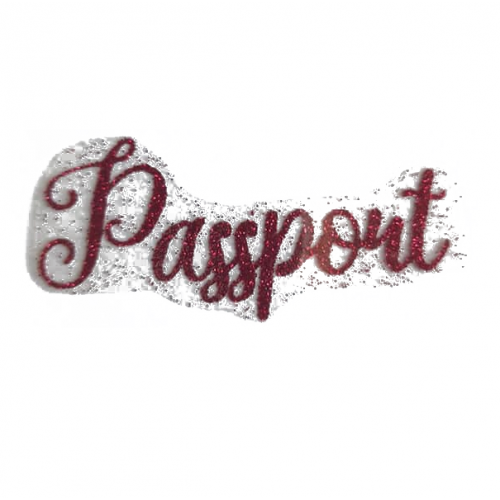 """Надпись из термотрансферной пленки """"Pasport"""" анг. Малиновый"""