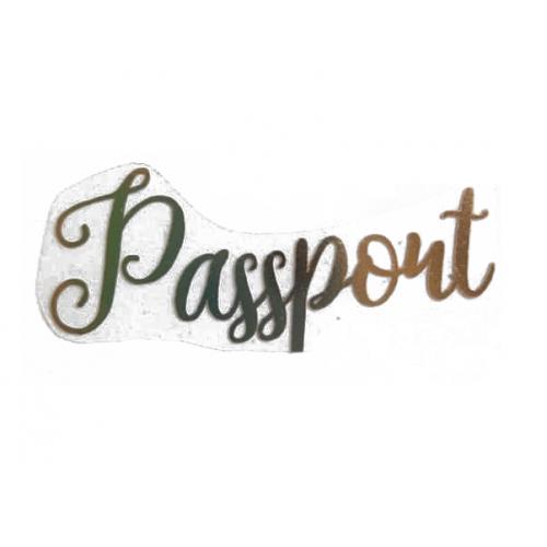 """Надпись из термотрансферной пленки """"Pasport"""" анг. Золото"""
