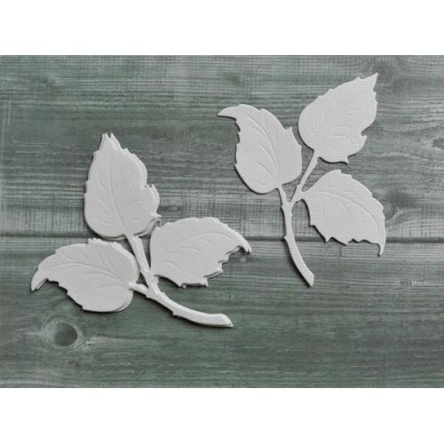 Набор вырубки из акварельной бумаги Лист розы фото